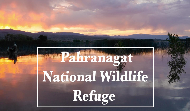Pahranagat National Wildlife Refuge