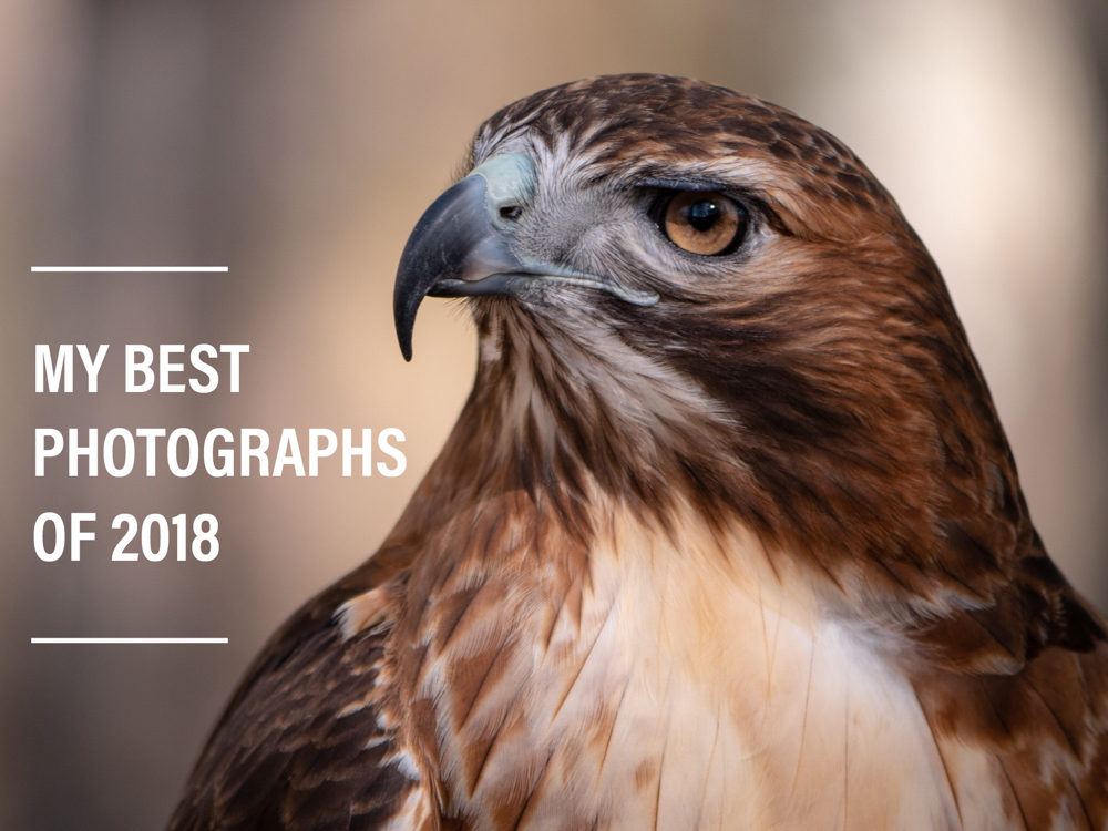 2018 best photographs - val in real life